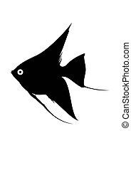 peixe, isolado, silhuetas, pretas, white., aquário