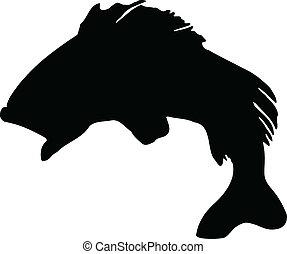 peixe, silhouette.