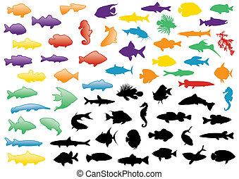 peixe, silhuetas, ilustração, set.