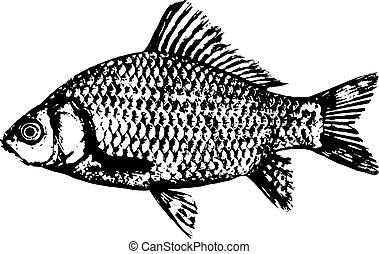peixe, silueta, ícone