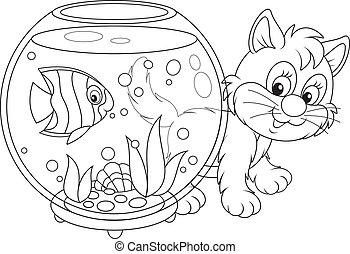 peixe, tocando, gatinho