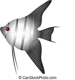 peixe, vetorial