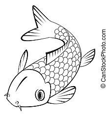 peixes koi