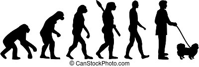 Pekingese Evolution with name