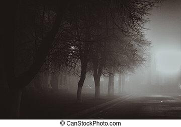 película, estilo, fog., otoño, noir, horror, escena, iluminación