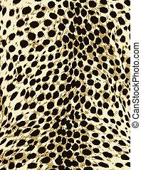 pele, moda, impressão, leopardo, animal