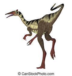 Pelecanimimus Dinosaur Tail