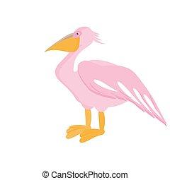 Pelican bird. Vector illustration
