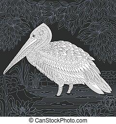 Pelican coloring page - Pelican bird line art. Coloring book...