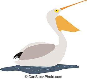 Pelican, illustration, vector on white background.