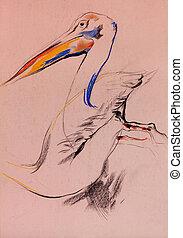 Pelican sketch - Old, grunge original pastel and hand drawn ...