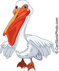 Pelican - Illustration of cute pelican