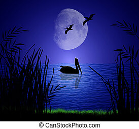 Pelicans silhouetted on a serene moonlit shore