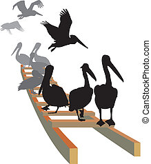 Pelicans on the ladder - vector illustration pelicans seated...
