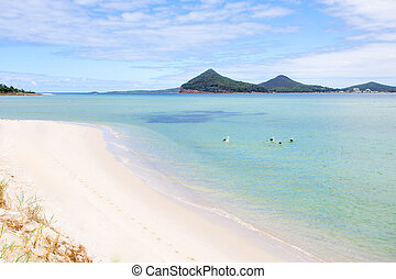 Pelicans swimming at Port Stephens scenic landscape -...