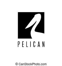 pelikán, vektor, tervezés, sablon