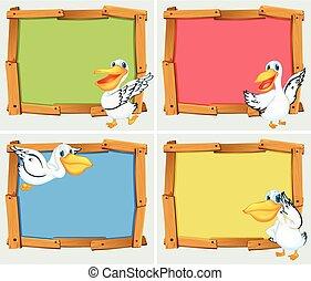 pelikan, frame, ontwerp, vogel