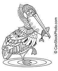 pelikan, kolorowanie, ilustracja, ptak, wektor, książka