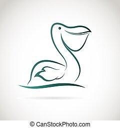 pelikan, wizerunek, wektor, białe tło