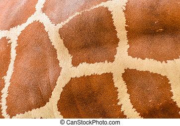 pelle giraffa