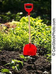 pelle, jardin, photo, ensoleillé, lit, closeup, jour