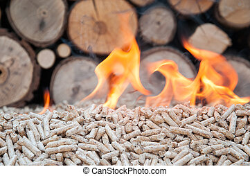 Pellets- Biomas - Pine pellets infront a wall of firewoods ...