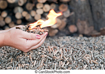 Different kind of pellets- oak, pine, sunflower- selective focus on the heap. Female hands hold pellets and flames.