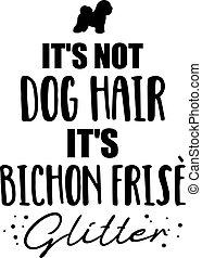 pelo, no, perro, resplandor, bichon, es, frise