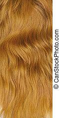 pelo, texture., hembra, rojo