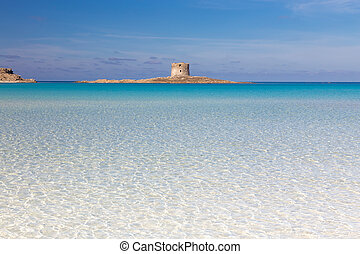 Pelosa beach, Sardinia, Italy. - Beautiful turquoise blue...