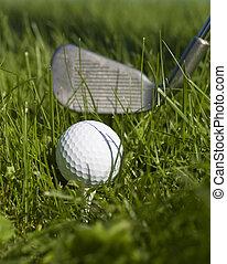 pelota, club, verde, golf, gras