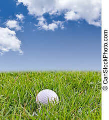 pelota de golf, en, césped alto