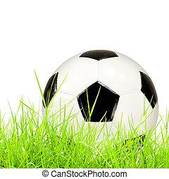 pelota del fútbol, en, hierba verde, aislado