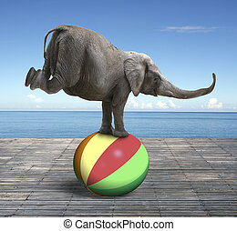 pelota, el balancear, colorido, elefante