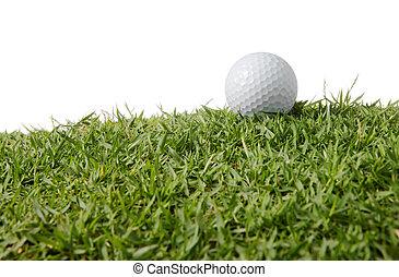 pelota, golf, pasto o césped