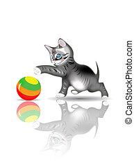 pelota, juego, gatito