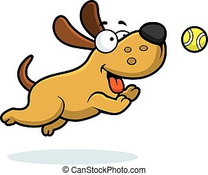 pelota, perseguir, caricatura, perro