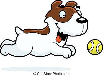 pelota, perseguir, russell, gato, terrier, caricatura