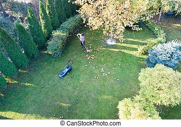 pelouse, émondage, femme, feuilles, ratisser
