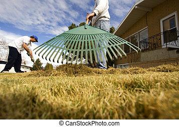 pelouse, entretien
