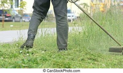pelouse, ficelle, chevêtre, ouvrier, coupures, herbe