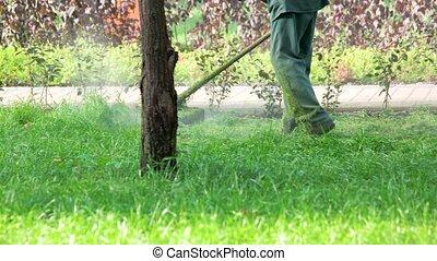 pelouse, ficelle, chevêtre, ouvrier, faucheur, grass., découpage