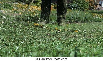 pelouse, ficelle, ouvrier, faucheur, outil coupant, chevêtre, puissance, herbe