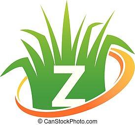 pelouse, initiale, centre, z, soin