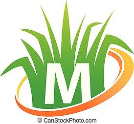 pelouse, initiale, m, centre, soin