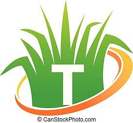 pelouse, initiale, t, soin, centre