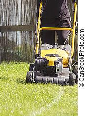pelouse, jardin, faucheur, découpage, vert, arrière-cour, herbe, service.