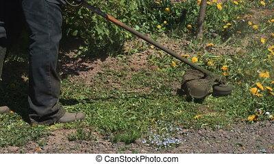 pelouse, mâle, ficelle, ouvrier, faucheur, outil coupant, chevêtre, puissance, herbe