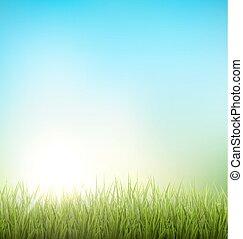 pelouse, nature, printemps, sky., arrière-plan vert, floral, herbe, levers de soleil