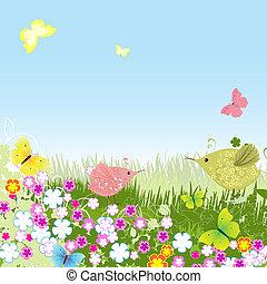 pelouse, oiseaux